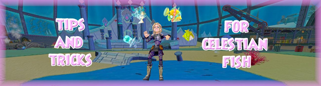 Tips and Tricks for Celestian Fish